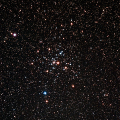 Messier 41 (StephenGA) Tags: rasa8 asi183mc astrophotography 2020 messier m41 openclusters clusters