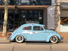Sod's Law (D.R.M.S.) Tags: melbourne victoria australia beetle volkswagen car