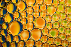 Complementary Bubbles (lkaldeway) Tags: bubbles bubble oil abstract background textured texture textures backgrounds blue indoors macro primary colours primarycolours circles shapes wallpaper green macrophotography yellow water wallpapers