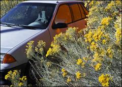 151012161814 (subniuq) Tags: car chamisa madrid