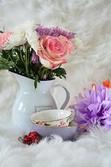 Tea Party (flashfix) Tags: february152020 2020inphotos flashfix flashfixphotography ottawa ontario canada nikond7100 40mm stilllife rose pink daisy white soft feminine valentinesday romantic simple texture teacups pinkandwhite floral flowers