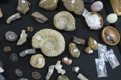 Minerals and Rocks (shaire productions) Tags: nature photo imagery rocks minerals fossils stones preciousstones