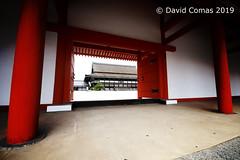 Kyoto - Imperial Palace (CATDvd) Tags: nikond7500 日本国 日本 stateofjapan nippon niponkoku nihonkoku nihon japón japó japan estatdeljapó estadodeljapón catdvd davidcomas httpwwwdavidcomasnet httpwwwflickrcomphotoscatdvd july2019 architecture arquitectura building edifici edificio palace palacio palau kyotoprefecture kyōtofu prefecturadekioto prefecturadekyoto 京都府 kioto kyoto kyōto kyotocity kyōtoshi 京都 京都市 palauimperialdekyoto palauimperial 京都御所 kyōtogosho palacioimperialdekioto kyotoimperialpalace aasia