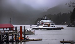 MV Bowen Queen's arrival to Horseshoe Bay (Christie : Colour & Light Collection) Tags: bc bcferries bcferry bowenqueenmv bowen queenhorseshoe bayferryferry boat ship vehicleferry carferry foggy rain westvancouver howesound nikon nikkor misty cloudy lowclouds nautical transportation pacificnorthwest pacificocean mountains bay horseshoebay marina horseshoe terminal horseshoebayterminal ferryterminal carcarrier dock wharf pier cove water ocean village community workboat minorferry britishcolumbiaferries britishcolumbia northamerica victoria metrovancouver sailing sewellsmarina flickrphotographer christiebytheriver wildlife seagulls bird birds atmospheric atmopshere coastguardstation coastguard