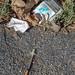 Syringe and Smokes
