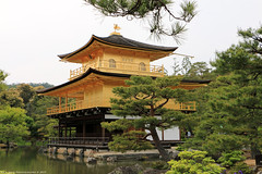 Kinkaku-ji (Rick & Bart) Tags: 鹿苑寺 kinkakuji goldenpavilion japan nippon 日本 rickbart city landoftherisingsun rickvink canon eos70d kyoto 京都市