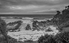 Another grey day (OzzRod) Tags: pentax k1 hdpentaxdfa1530mmf28 landscape seascape beach coast shoreline clouds monochrome blackandwhite dailyinfebruary2020
