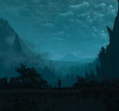 ''One Quiet Night'' (HodgeDogs) Tags: nvidialarahjohnson texture grass trees tree human mist fog night inexplore explore photography people cdpr cdprojectred witcher3