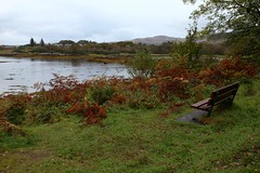 Photo of IMG_4679 Salen, Isle of Mull