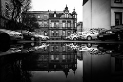 Puddle stories (Black&Light Streetphotographie) Tags: mono monochrome menschen menschenbilder leute lichtundschatten lightandshadows people personen portrait peoples portraits urban tiefenschärfe wow water wasser dof depthoffield fullframe vollformat city closeup sony streetshots streets streetshooting street streetportrait schwarzweis streetphotographie sw sonya7rii blackandwhite bw blackwhite bokeh bokehlicious blur blurring