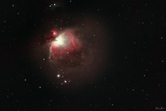 Orion nebula M42 (Shane Jones) Tags: orion m42 nebula deepsky gas stars space sky celestial astro nikon d850 williamopticsz61 zenithstar61 ioptronskyguiderpro