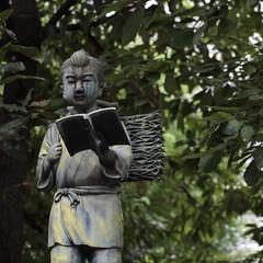 Sontoku Statue (Jeremy Caudle) Tags: japan statue tokyo