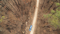 Burnt (OzzRod) Tags: dji phantom3advanced quadcopter fc300s207mmf28 drone vertical aerial bushfire forest burned vehicle conjola nswsouthcoast