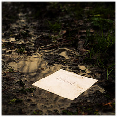 It's Wet (Mandy Willard) Tags: 366 1702 2020th45 mud puddle paper text