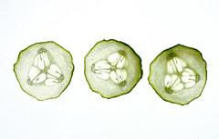 (skloi) Tags: gemüse vegetables green grün salat salad durchlicht backlit white macromondays
