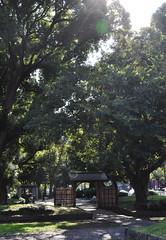Shiba kōen (DameBoudicca) Tags: tokyo tokio 東京 japan nippon nihon 日本 japón japon giappone shibakōen 芝公園 港区 minato park parc parque 公園 green grön grün verde vert 緑色
