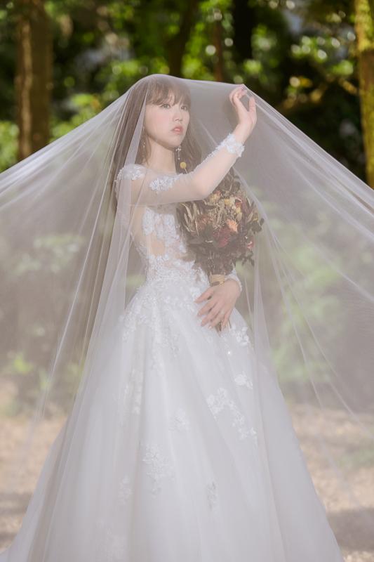 cheri婚紗包套,逆光婚紗,高家繡球花,乾燥捧花,ME攝影棚,新祕BONA,繡球花婚紗,MSC_0023