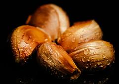 Vegetables - Garlic (Jose Rahona) Tags: macromondays vegetables macro mondays drops