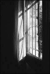(analogicmoment) Tags: 35mm analogphotography blackandwhite kodaktrix400 kodakhc110b pushedfilm leicam4p summicron35viii windowslight keepfilmalive filmisnotdead