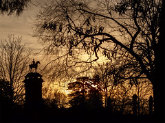 Siluetas / Siluets (JMT Photo & Edition) Tags: sunset atardecer backlight backlit contraluz dawn amanecer puestadesol arbol árbol