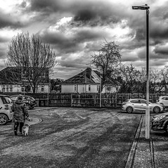 Daily Life (Mike Cook 67) Tags: imagesofthestreetgroup streetphotography eastanglia lifeonthestreet nikoncoolpixaphotography monochrome dailylife hertfordshire suburbanscapeplace cinematicphotography allstreetphotography anurbanpictureofbritain