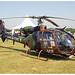 SA 342 M Gazelle - 4164 - GCF | ALAT