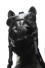 Monument au Général Alvear (1913-23) (just.Luc) Tags: horse paard cheval pferd brons bronze metal metaal monochrome monochroom monotone sculpture escultura statue estatua statua beeld beeldhouwwerk skulptur parijs parigi paris îledefrance france frankrijk frankreich francia frança europa europe art kunst museum museo musée museet museu