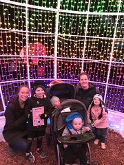 "Family Photo at Zoo Lights • <a style=""font-size:0.8em;"" href=""http://www.flickr.com/photos/109120354@N07/49548259043/"" target=""_blank"">View on Flickr</a>"