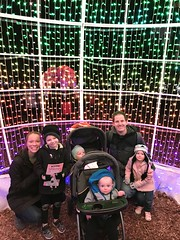 "Family Photo at Zoo Lights • <a style=""font-size:0.8em;"" href=""http://www.flickr.com/photos/109120354@N07/49548265973/"" target=""_blank"">View on Flickr</a>"