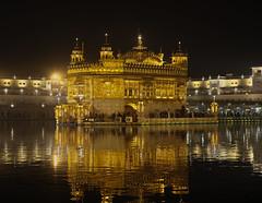 golden hour (tsd17) Tags: golden temple amritsar india sikh reflection