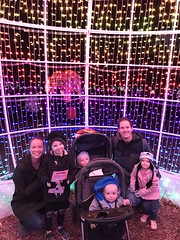 "Family Photo at Zoo Lights • <a style=""font-size:0.8em;"" href=""http://www.flickr.com/photos/109120354@N07/49548267283/"" target=""_blank"">View on Flickr</a>"