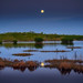 Full moon and reflection in the marsh at Ten Thousand Islands National Wildlife Refuge near Naples, Florida