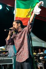Bob Marley 75 Celebrations 2020 (worldareggae) Tags: jesseroyal christopher ellis kim nain damian marley julian kymani mackeehan jah israel jahdore delando rasi toots the maytals marcia griffiths droop lion mortimer jesse royal kelissa sherieta elly b