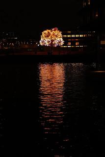 - Oslo, Night-time L1030733