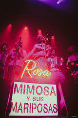 ©Ana Viotti_Rosa Mimosa y Sus Mariposas_Calle Rosa-27