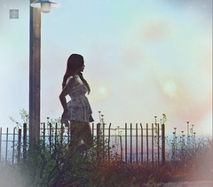 under the light (RedPoison003) Tags: sea ocean lantern light street fence allone dress summer plants flowers wave go walk secondlife second life 3 d avatar virtual red redpoison legacy genus