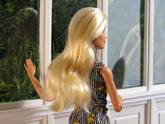 Never the Two Shall Meet (back2s0ul) Tags: barbie doll millie camping fun fashionista greenhouse madetomove