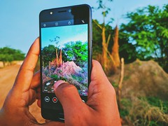 Take a picture... (axelrammon48) Tags: photooftheday xiaomi green hands paisagem cool google pic air sun picture hangout take takeaphoto photoofphoto redmi cellphone redminote8 natureza day asus photography