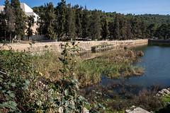 8V2A9776 (Andrey Zeigarnik) Tags: solomonspools buraksuleīmān elburak בריכותשלמה westbank palestine israel bethlehem