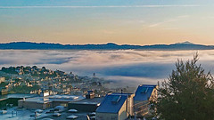 Morning Fog from above Noe Valley - San Francisco (BlueVoter - thanks for 2.8M views) Tags: sf sanfrancisco sfo fog brouillard