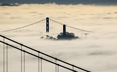 Coit Tower in Fog (photo101) Tags: sanfrancisco city weather fog