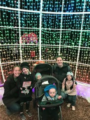 "Family Photo at Zoo Lights • <a style=""font-size:0.8em;"" href=""http://www.flickr.com/photos/109120354@N07/49548990862/"" target=""_blank"">View on Flickr</a>"