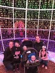 "Family Photo at Zoo Lights • <a style=""font-size:0.8em;"" href=""http://www.flickr.com/photos/109120354@N07/49548992062/"" target=""_blank"">View on Flickr</a>"