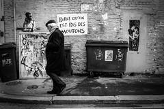 Les moutons. (LACPIXEL) Tags: rue street calle callejera homme man hombre human humain poubelle mur wall pared streetart dieppe france normandie noiretblanc blancoynegro blackwhite flickr lacpixel