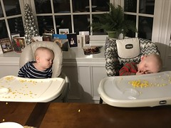 """The Twins Sleep in Their High Chairs • <a style=""""font-size:0.8em;"""" href=""""http://www.flickr.com/photos/109120354@N07/49549015957/"""" target=""""_blank"""">View on Flickr</a>"""