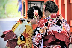 Floral Patterns (L. Felipe Castro) Tags: japan kyoto kimono traditional female asian japanese dressed typical clothes back fashion chick girls together lovely culture diverse ears hear style connected wfi internet smart phone design art handcrafted hand job