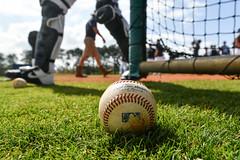 20200217_Hagerty-983 (Tom Hagerty Photography) Tags: baseball detroittigers florida lakeland mlb springtraining