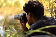 Coshis pajareando (Katubelasdf) Tags: temuco chile birdwatching nature birding 50mm nikond5300 nikon