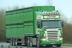 Scania R500 Laverty Livestock T3 HAY (SR Photos Torksey) Tags: transport truck haulage hgv lorry lgv logistics road commercial vehicle freight traffic scania r500 livestock laverty