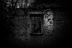 Collection 1 image 4 (j14melton) Tags: silhouette creepy goth gothic vacant building brick spooky horror